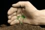 Lead nurturing – zadbaj o swoich przyszłych klientów